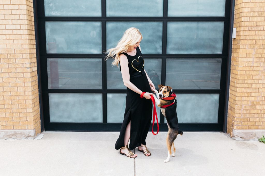 Christine and Jelly | Rescue in Style