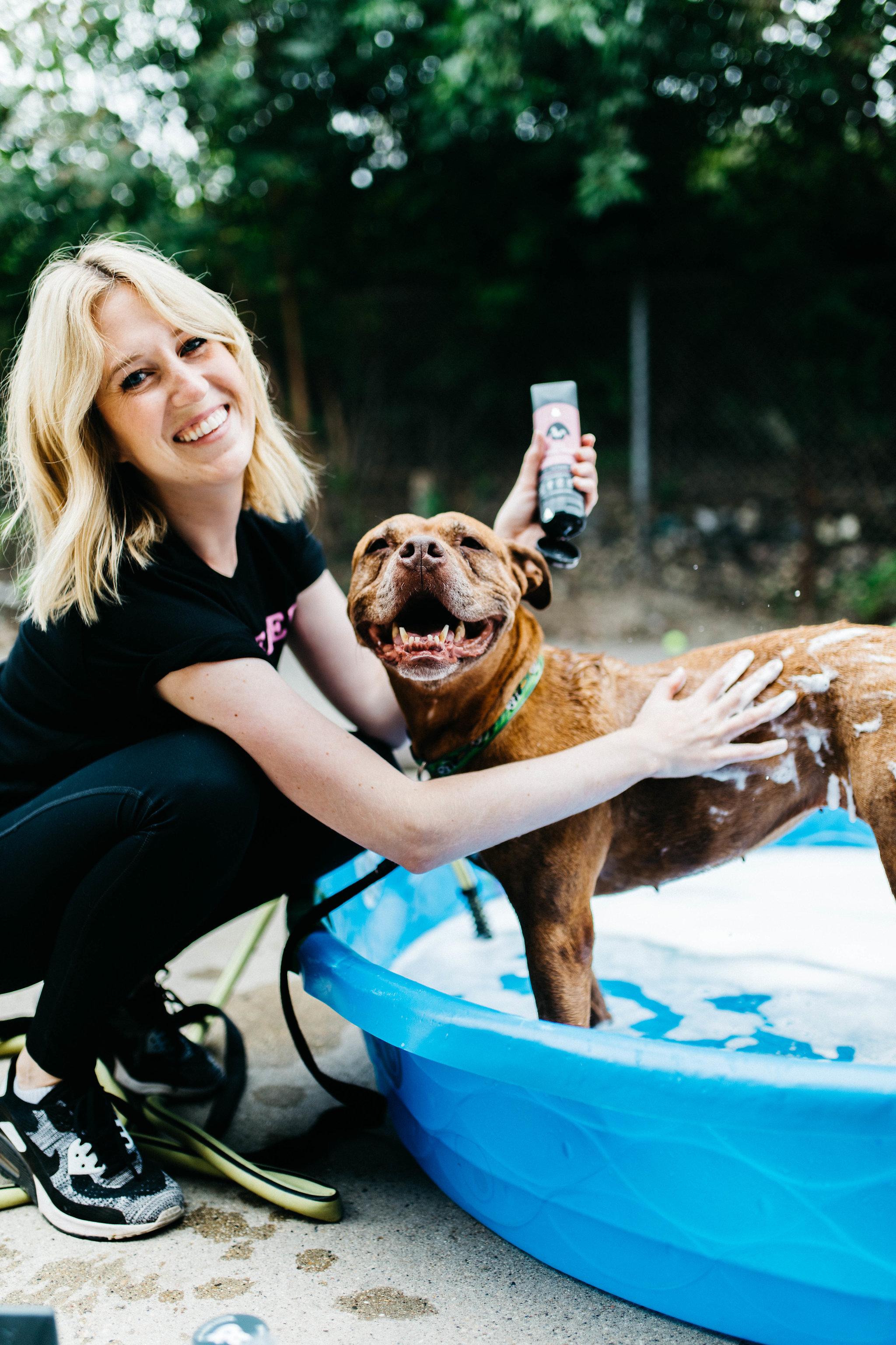 Why you shouldn't use human shampoo on your dog