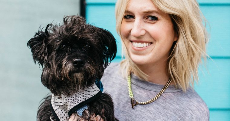 Why Chicago Canine Rescue needs your help