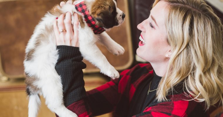 How Second City Canine completes families