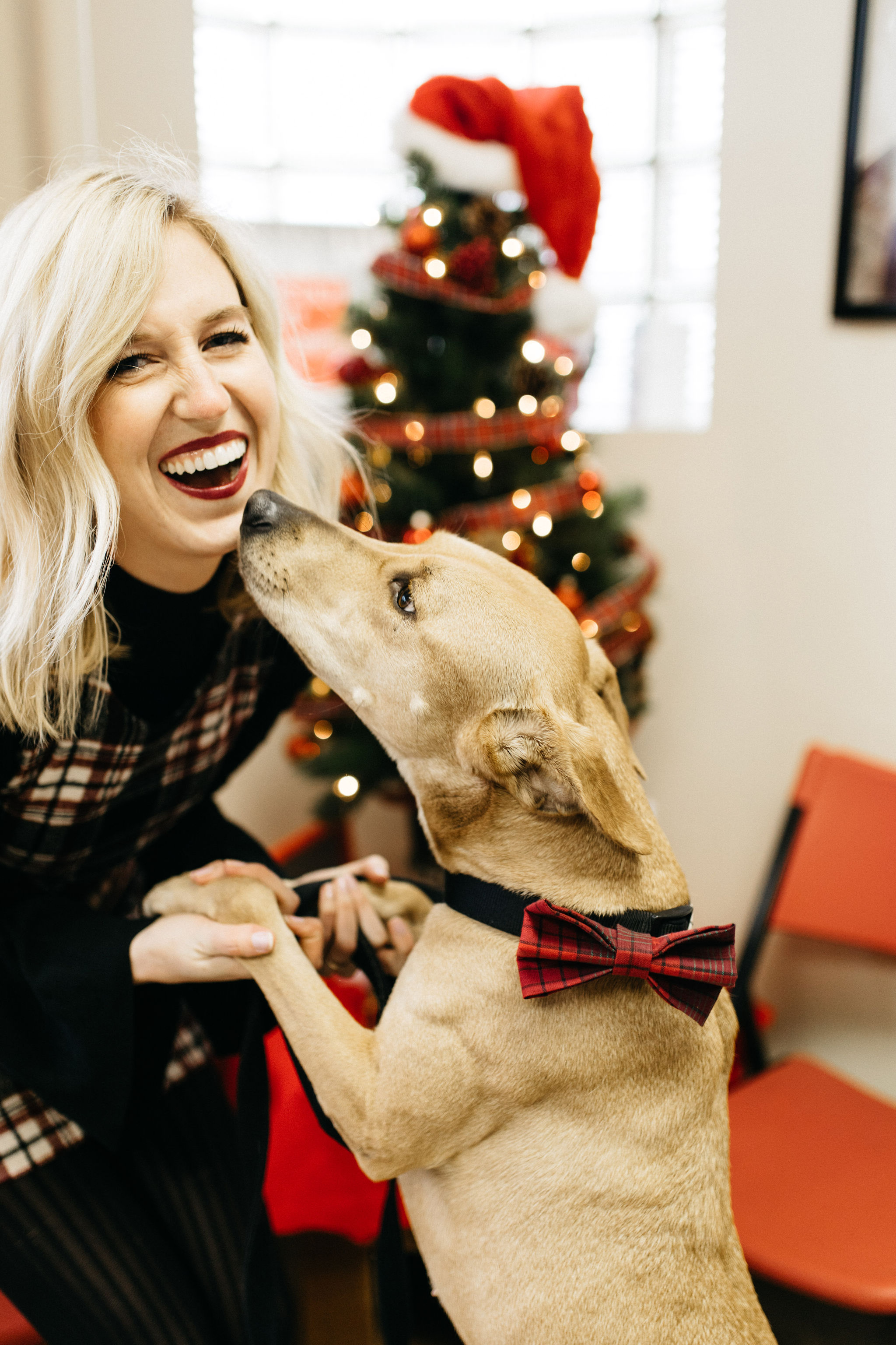 2018 Gifts for Animal Lovers