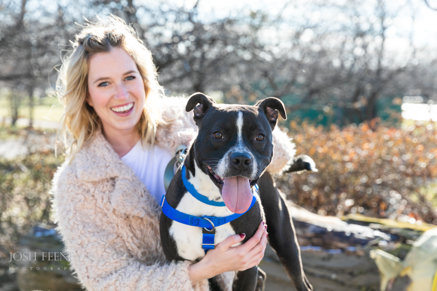 A rescue giving life to dogs in need of second chances.