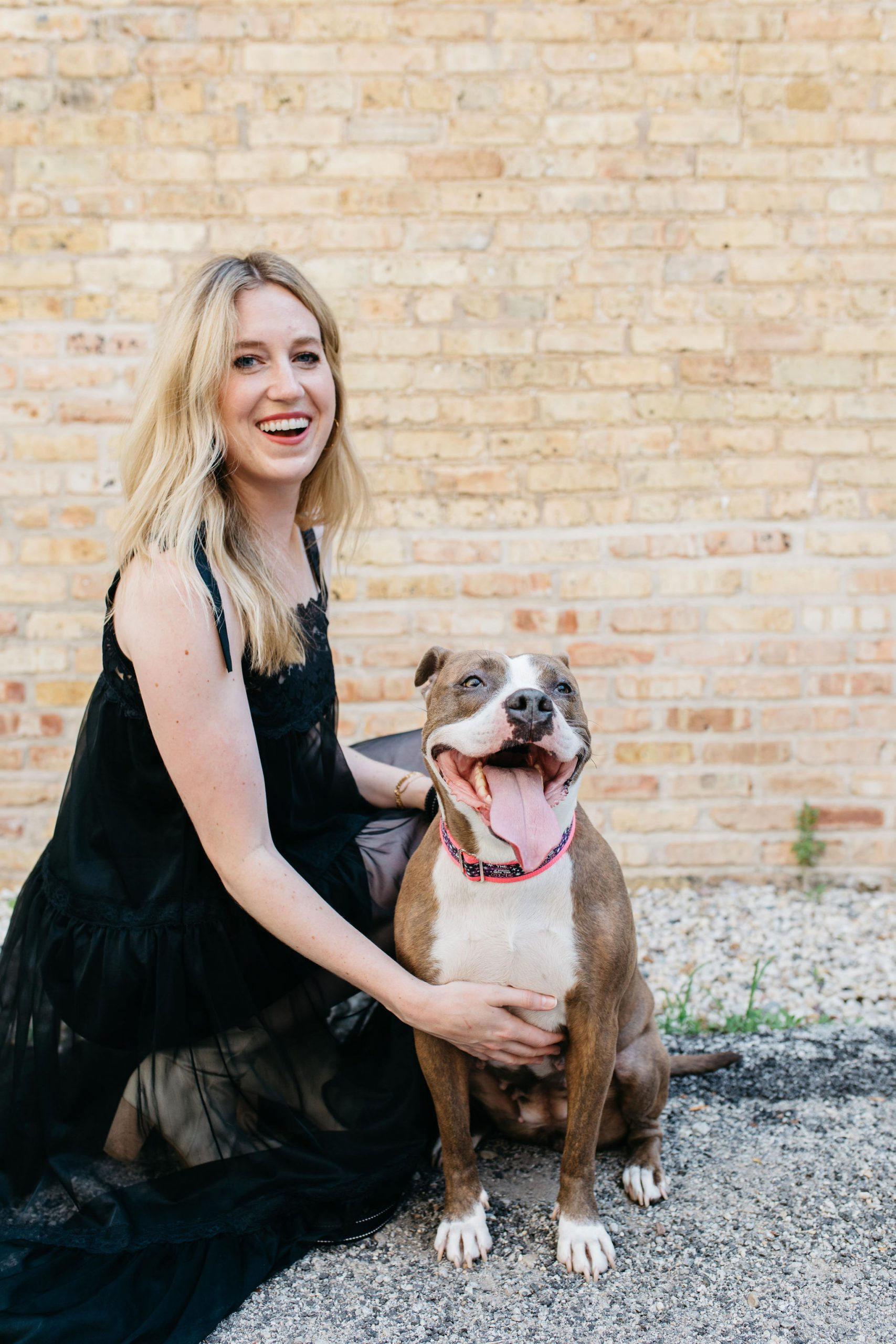 Grabbing attention through pictures: tips for the best pet photos